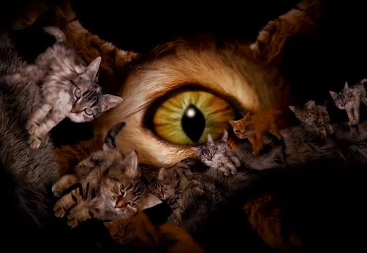 Run The Jewels – Meowpurrdy feat. Lil Bub, Maceo, Delonte (Official Music Video)